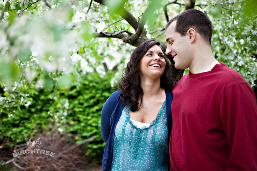 engagement photo in mellon park under blossoming tree
